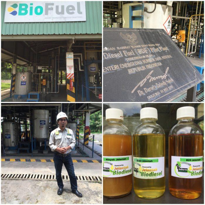 Penjelasan Proses Jelantah menjadi Bahan bakar Biodiesel